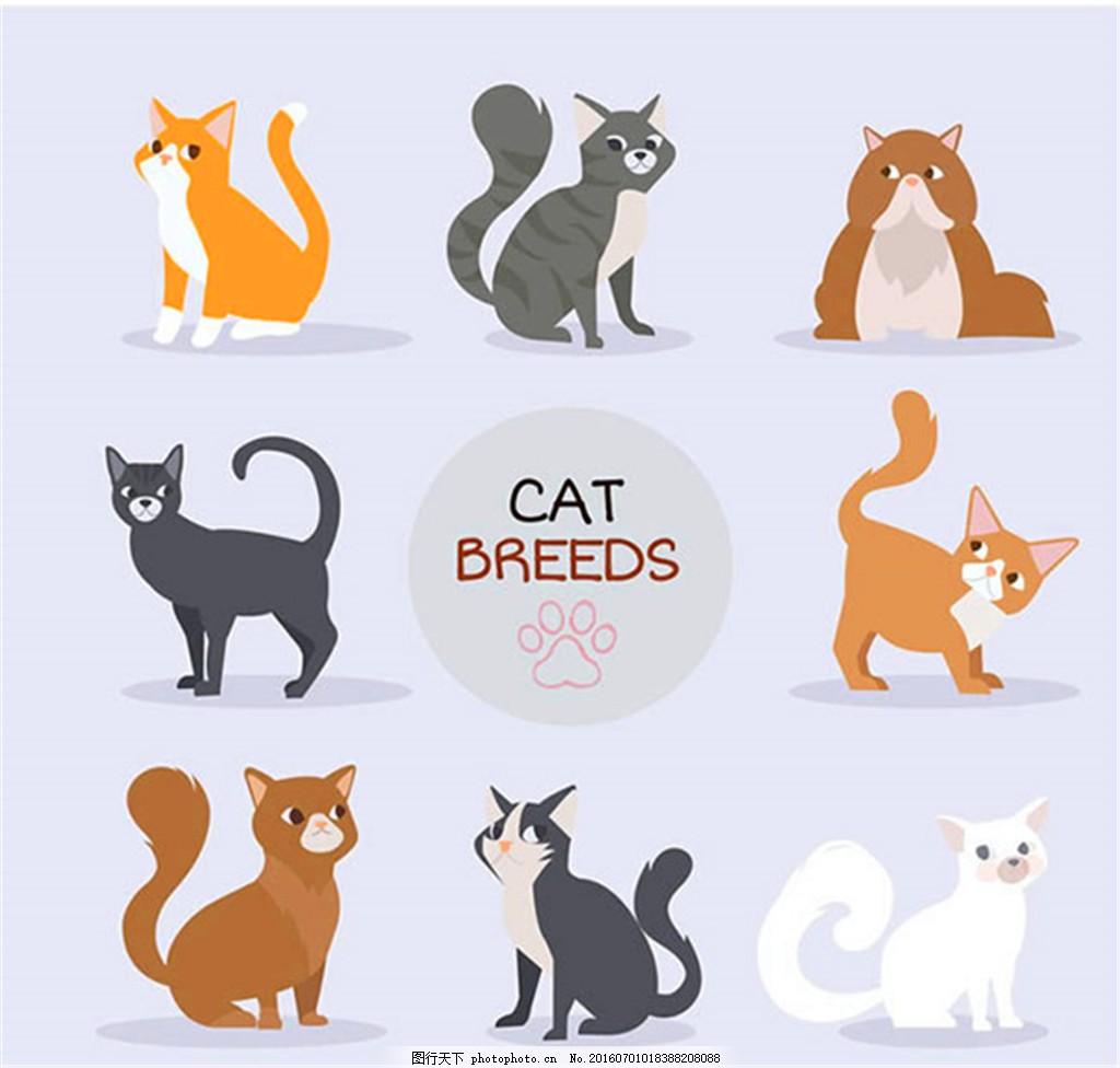 扁平化可爱小猫矢量 卡通 宠物 动物 手绘 矢量图