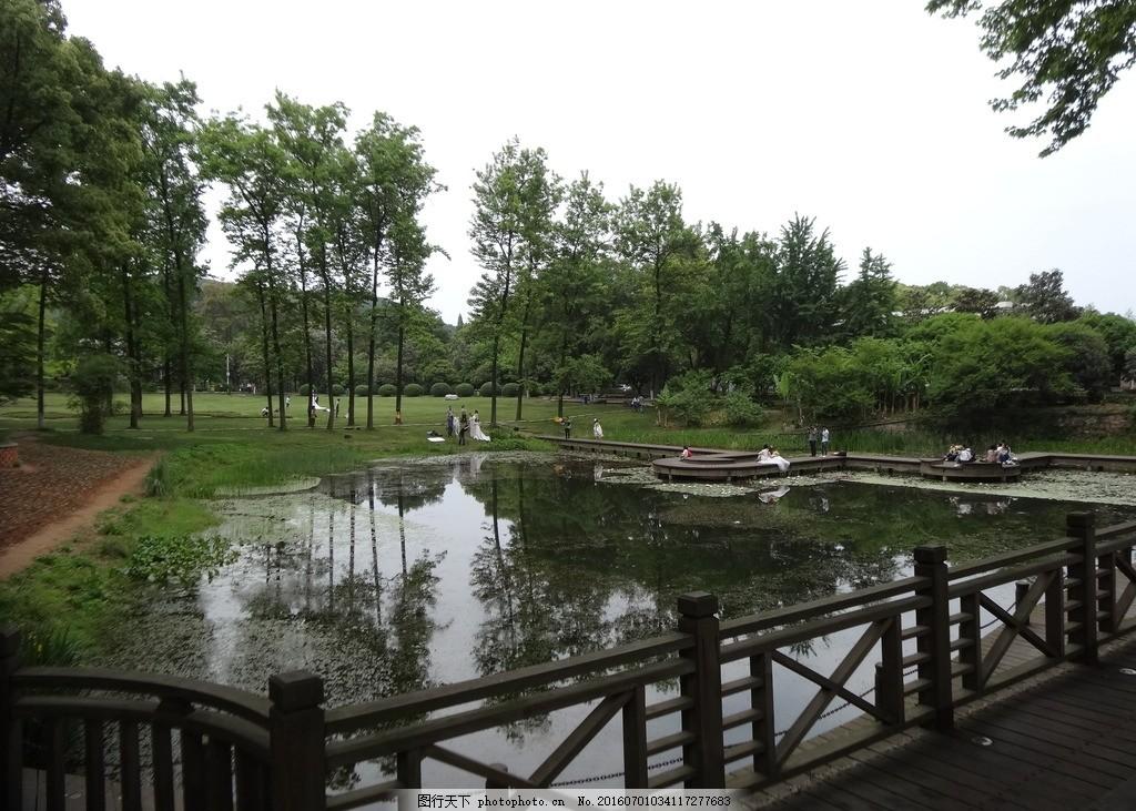 风景 湖边 新人婚照 公园一角 美景佳人 自己的旅行自己决定 摄影