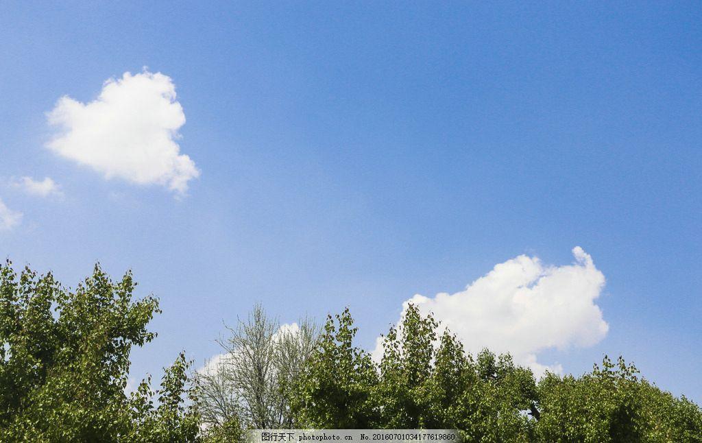 蓝天 白云 树 绿色 悠远 意境 安静 晴朗 摄影 旅游摄影 自然风景 240