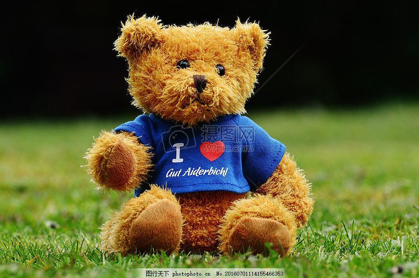 草地上的泰迪熊 保护区 动物 滑稽 绿色 心形 蓝色 红色