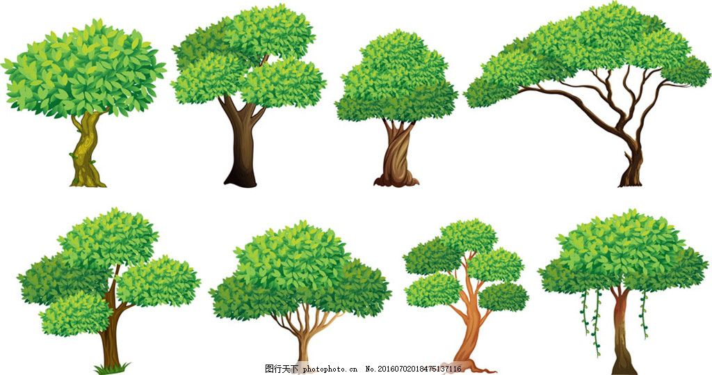 绿色美丽大树 茂盛 手绘 逼真