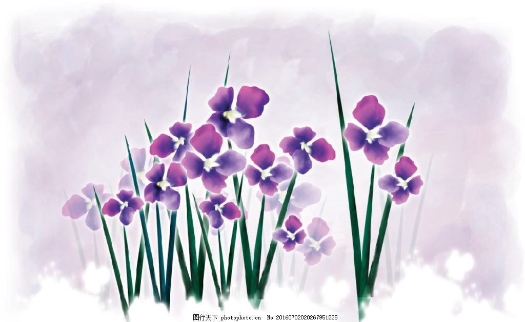 韩国手绘紫色兰花
