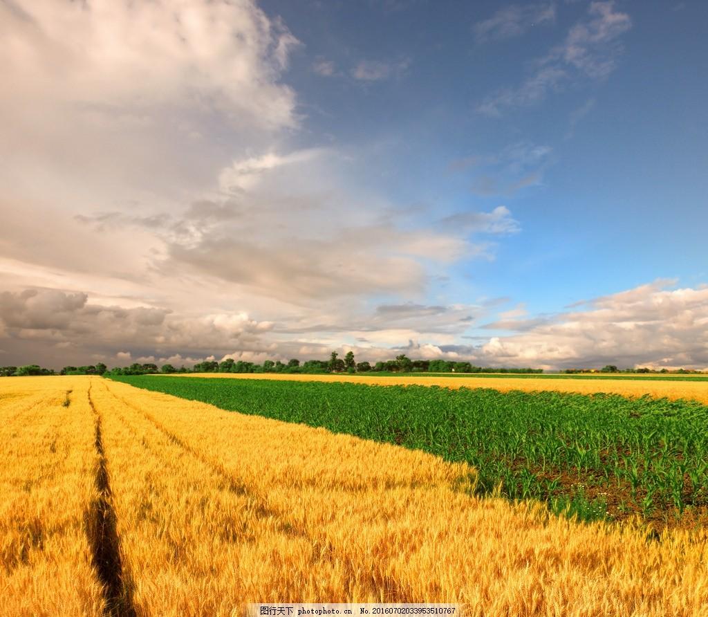秦皇岛农田 唯美 风景 风光 旅行 自然 农场 摄影 国内旅游