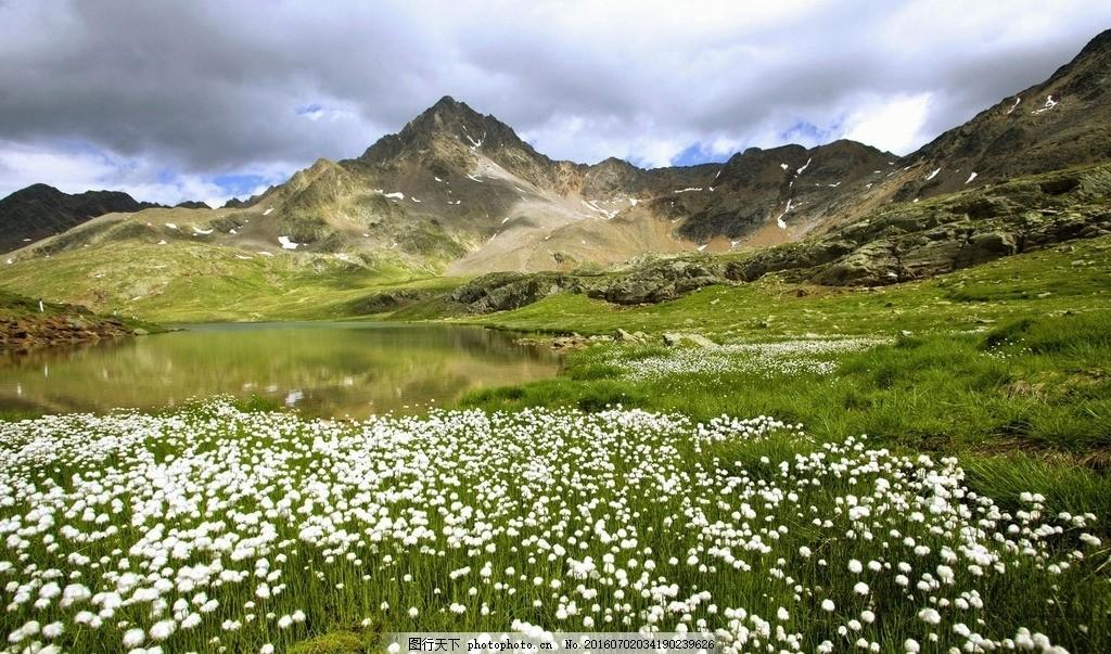 天空 蓝天 云彩 白云 远山 山 草地 花海 风景 摄影 自然景观 自然