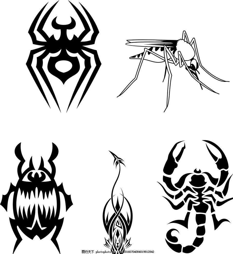 七星瓢虫 蝎子 蜘蛛