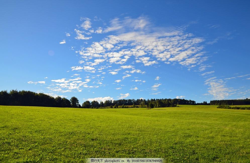蓝天 白云 绿地 草地 树木 森林 灌木林 天空 摄影 旅游摄影 自然风景