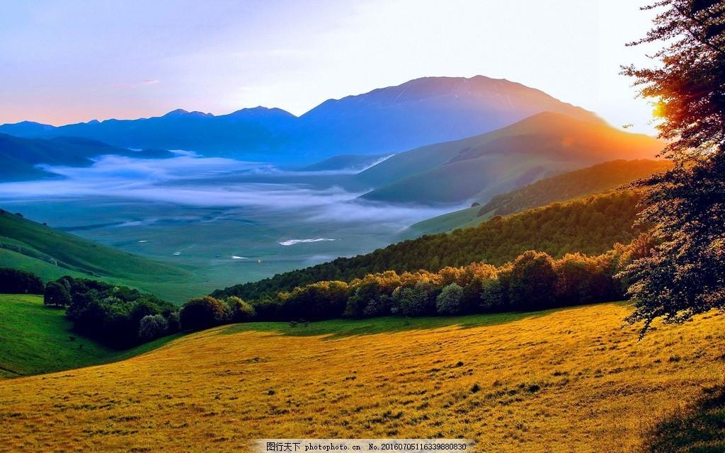 高清墨尔本远山树林风景图片素材 墨尔本风景 山坡 小草