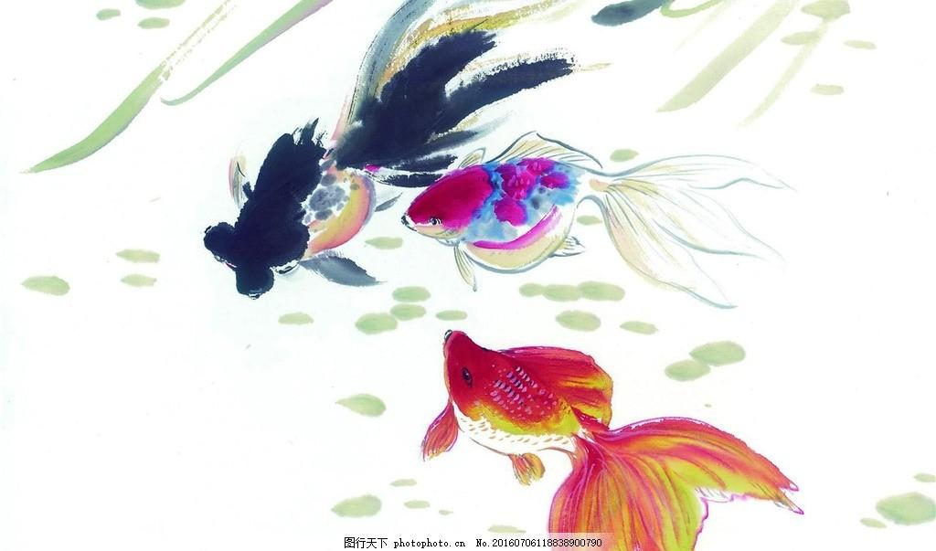 国画金鱼 水墨画 鱼虫画 写意画 中国画 艺术绘画 文化艺术 绘画书法
