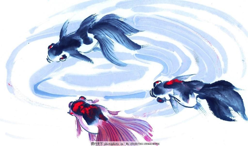 金鱼 国画 水墨画 鱼虫画 写意画 中国画 艺术绘画 文化艺术