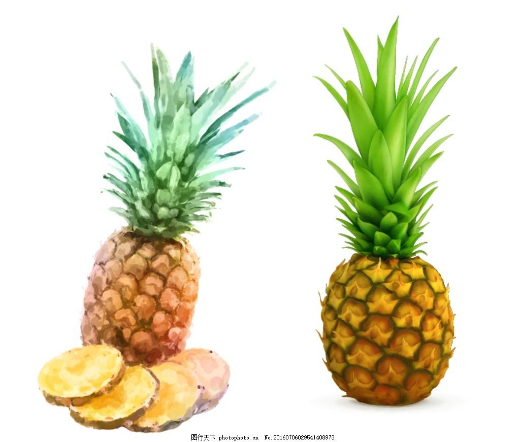 矢量水果素材 卡通水果素材 卡通菠萝素材 矢量菠萝素材 手绘菠萝
