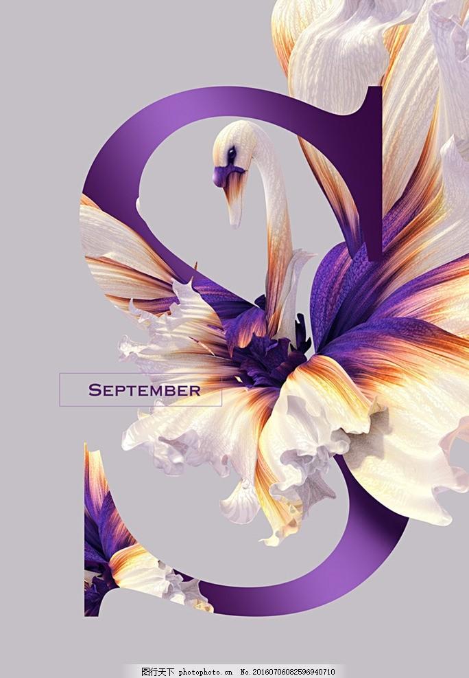 创意字母海报 唯美海报 创意字母 动物特写 创意海报 字母设计 设计