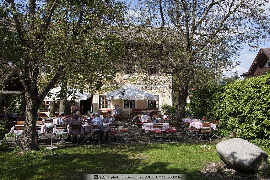 树林里的房子 树叶 石头 窗户 草地 椅子 红色