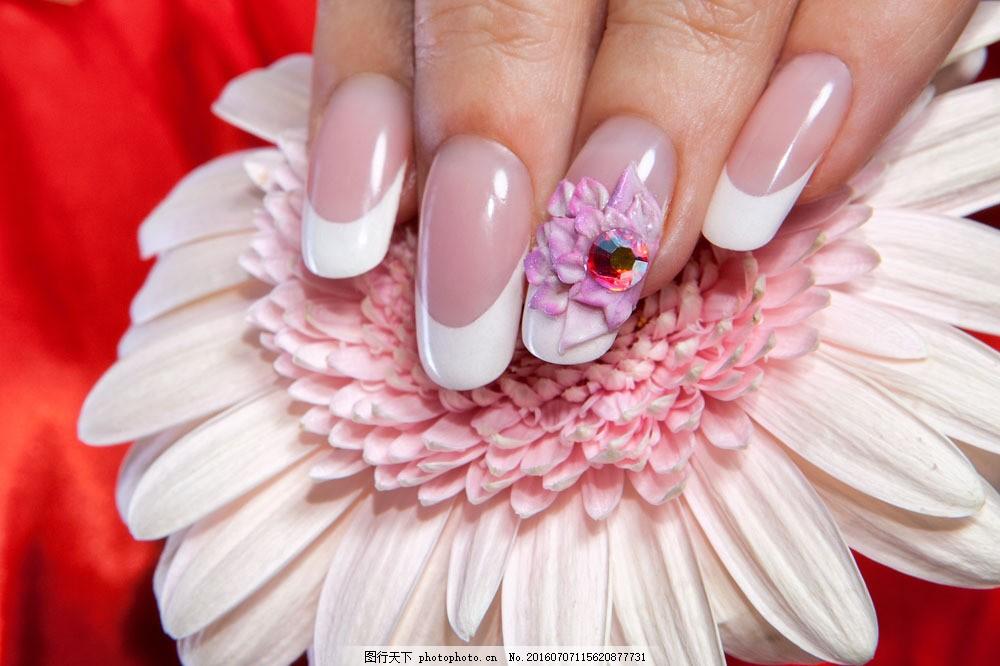 鲜花与美甲手部 鲜花与美甲手部图片素材 指甲油 女性手指 女人手部