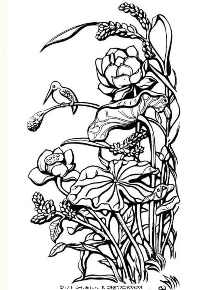 手绘 美丽 荷花 线条 白描 线描 国画 黑白 插画 设计 底纹边框 背景