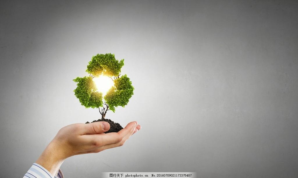 捧着幼苗的手 环境 保护 呵护 自然 手捧树苗 手捧 树苗 幼苗 爱心