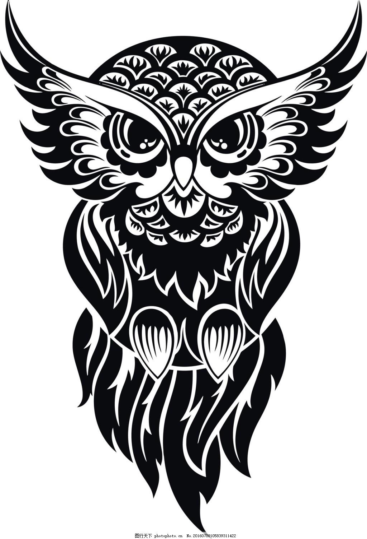 黑白动物猫头鹰
