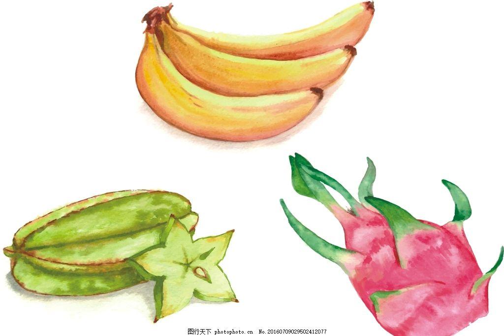 矢量水果 写实水果 水彩水果 手绘水果 香蕉 矢量香蕉 水彩香蕉 手绘