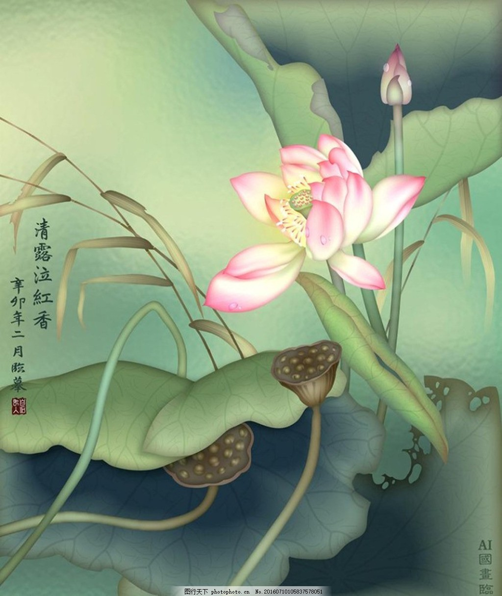 工笔画荷花 水彩 中国风 莲蓬 绿色