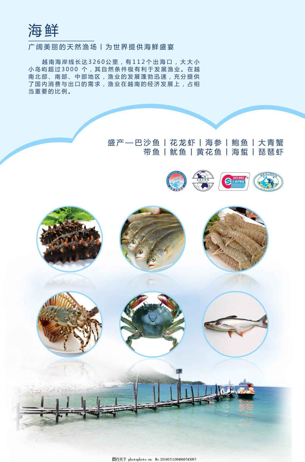 海鲜排版广告写真 海产品 东盟海产 越南海产 海鲜产品 海产品分类图片