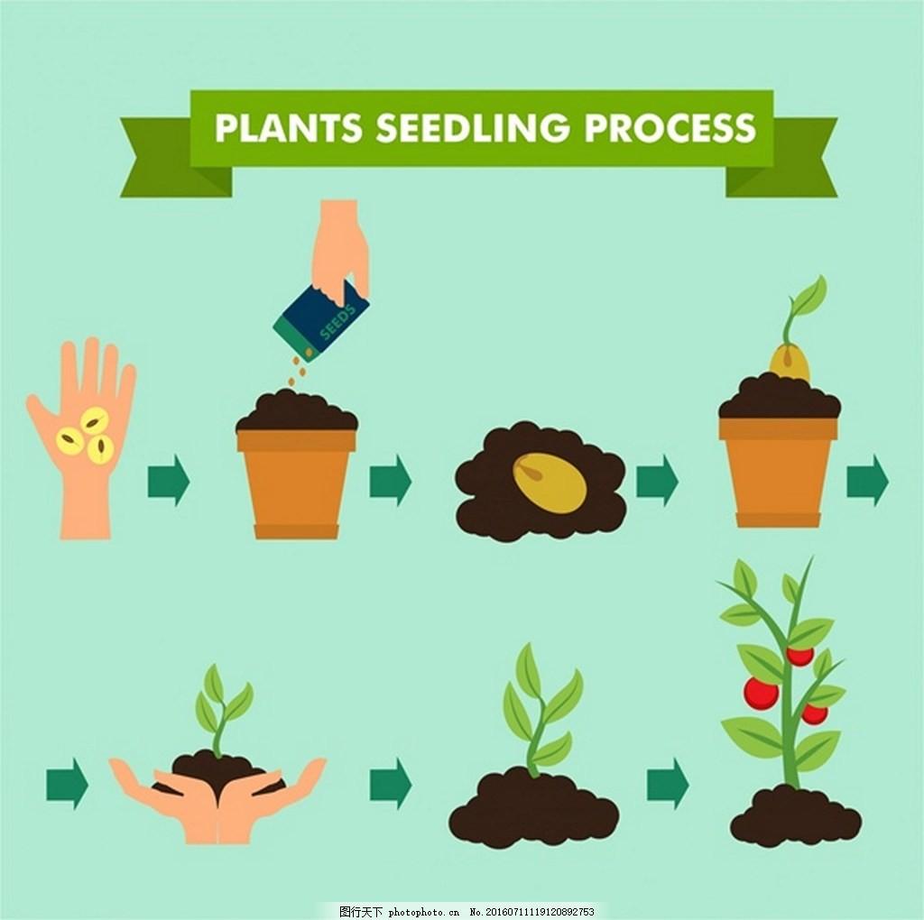 植树矢量素材 种植步骤 植物