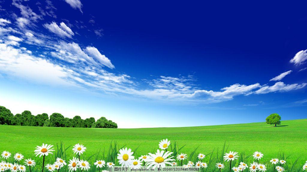蓝天白云草地风景 自然风景 春天 鲜花 春季 草坪 蓝色