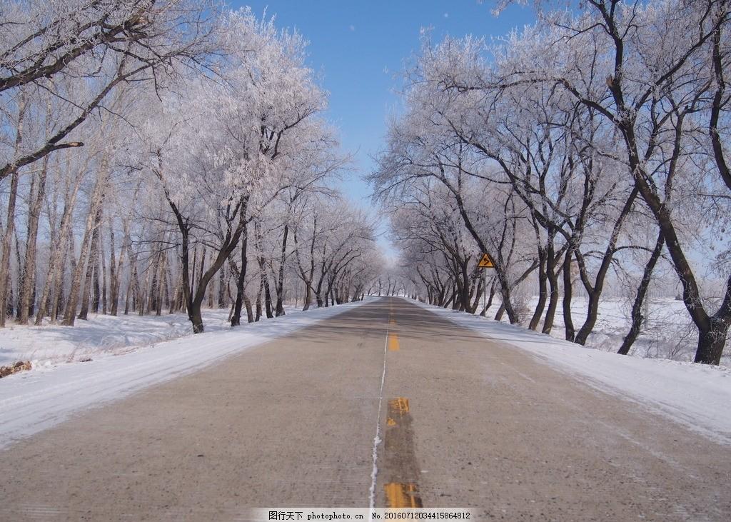 东北的冬天 雪 东北 树挂 霜 美丽 银装素裹 摄影 自然景观 山水风景