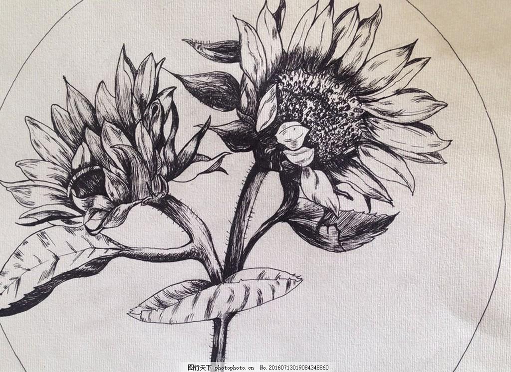 手绘素描花