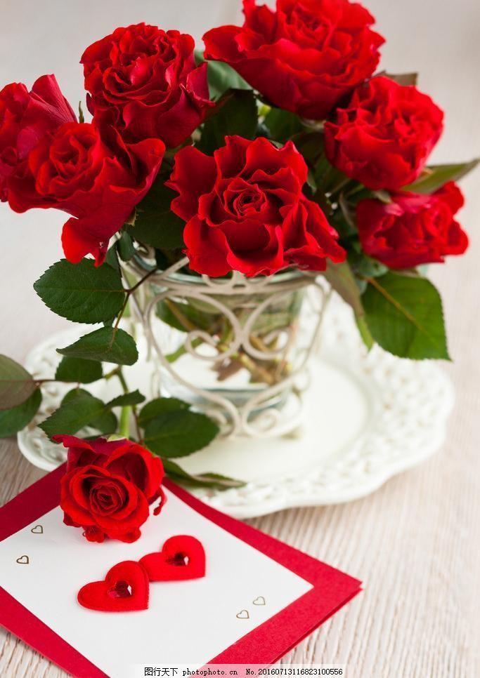 玫瑰花图片简笔画手绘