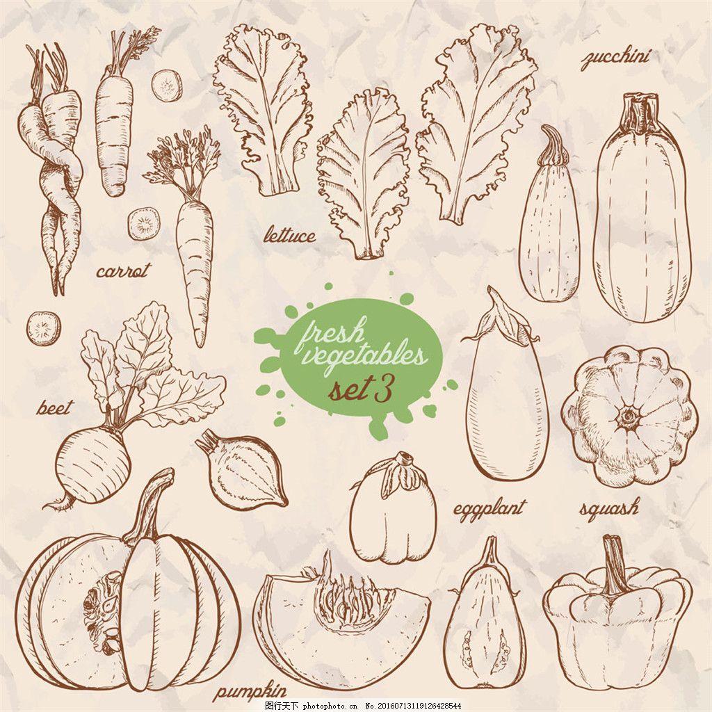 手绘玉米等蔬菜图片