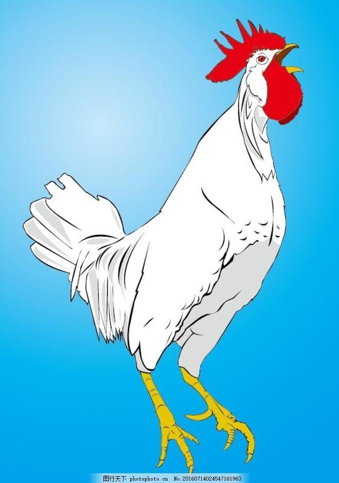 公鸡打鸣 卡通公鸡打鸣 公鸡素材 手绘公鸡 动物矢量