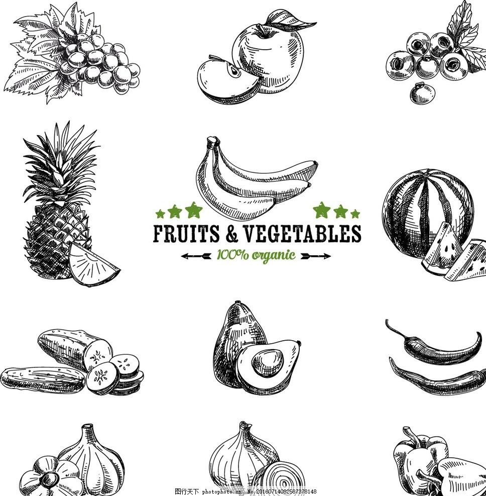 笔刷插件 ps工具 笔刷预设  手绘水果 水果 水果广告 热带水果 芒果