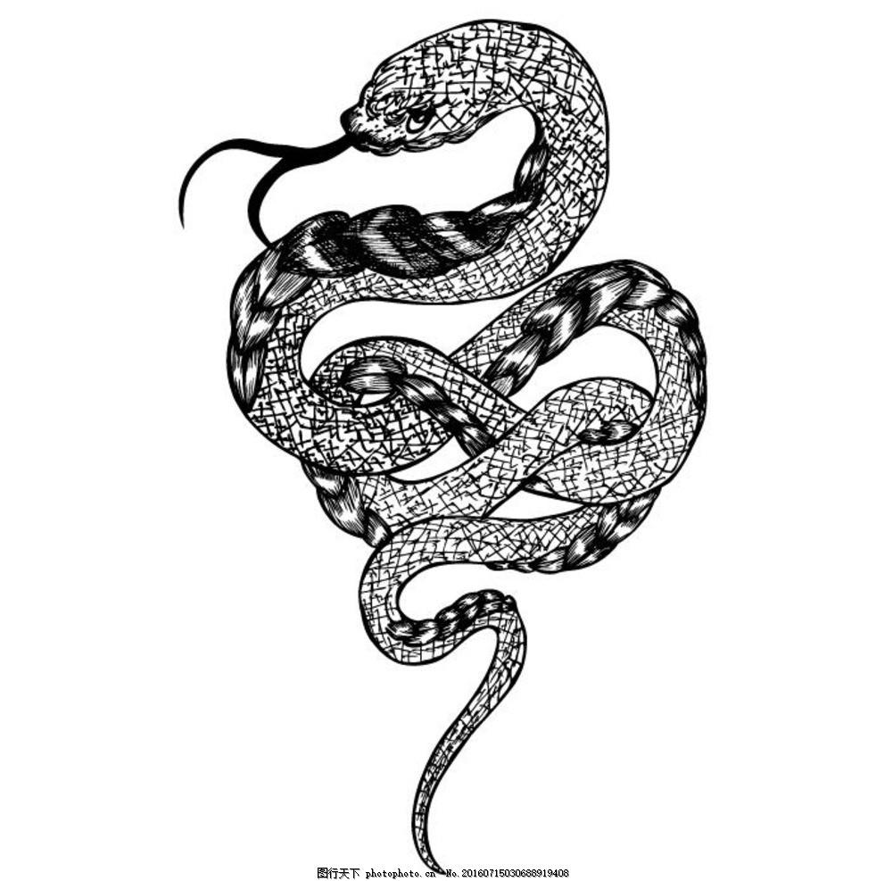 黑白蛇纹身
