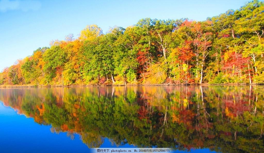 湖边的树林 蓝天 白云 树的倒影 壁纸 电脑桌面 摄影 自然景观