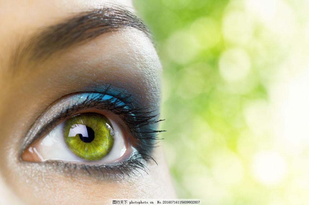 蓝色眼影眼睛图片素材 彩妆眼睛 眉毛 眼睛 瞳孔 睫毛 美女眼睛 人体