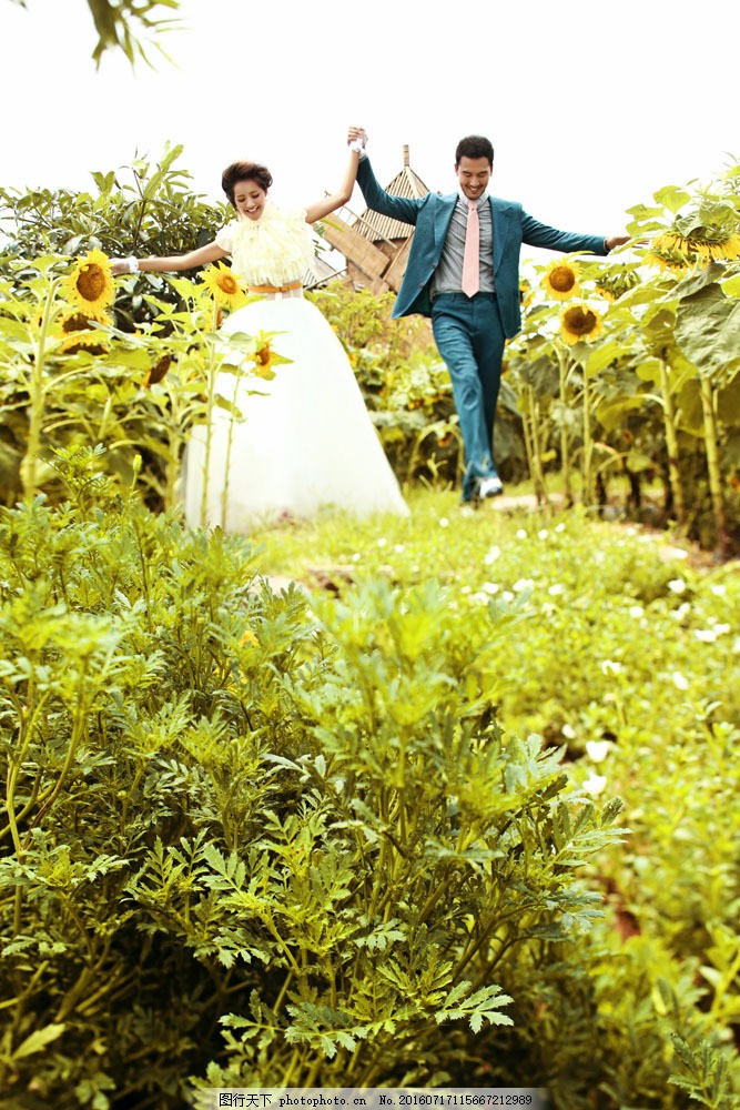 向日葵风景婚纱照图片