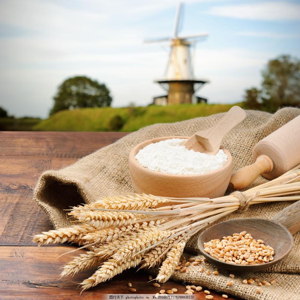 麦穗与面粉 麦穗与面粉图片素材 麦子 小麦 食材 外国美食 餐饮美食