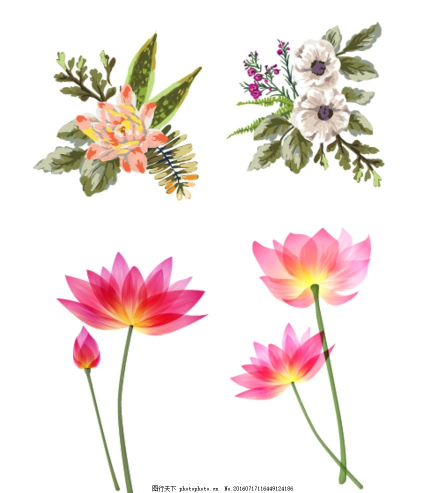 水彩花朵 梦幻花朵 水彩画 手绘花朵 鲜花花朵 含苞待放 矢量鲜花花蕾