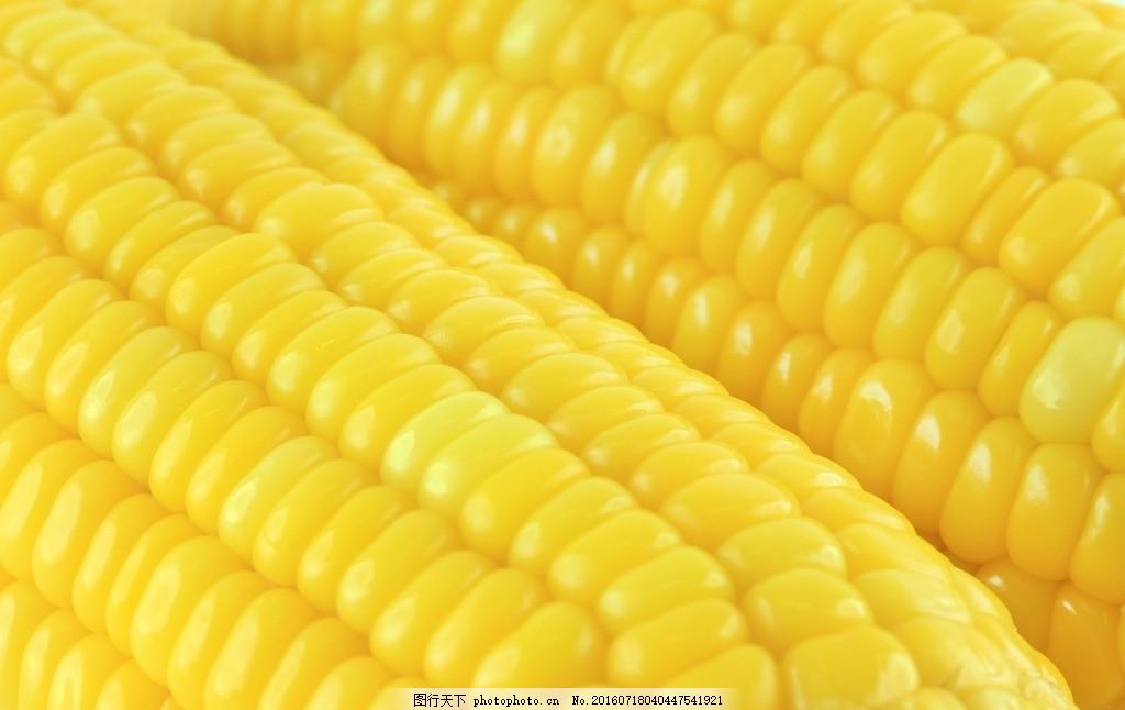唯美 食物 食品 营养 健康 粮食 原料 粗粮 玉米 摄影 餐饮美食 食物