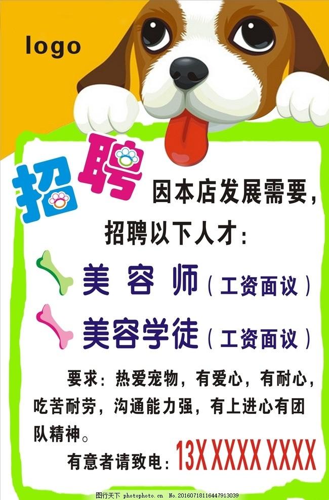宠物店招聘 宠物招聘 美容师 美容学徒 小狗 广告设计 海报设计