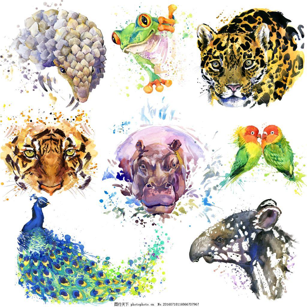 动物头像水彩画高清图片