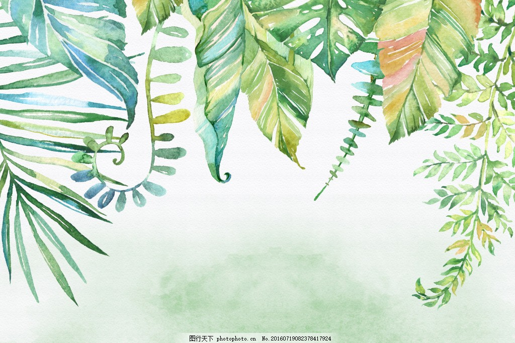 小清新的手绘设计涂鸦叶子