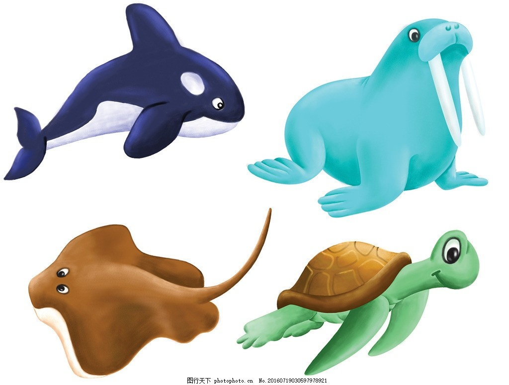 卡通动物设计 海洋动物 鲸鱼 海象 海龟