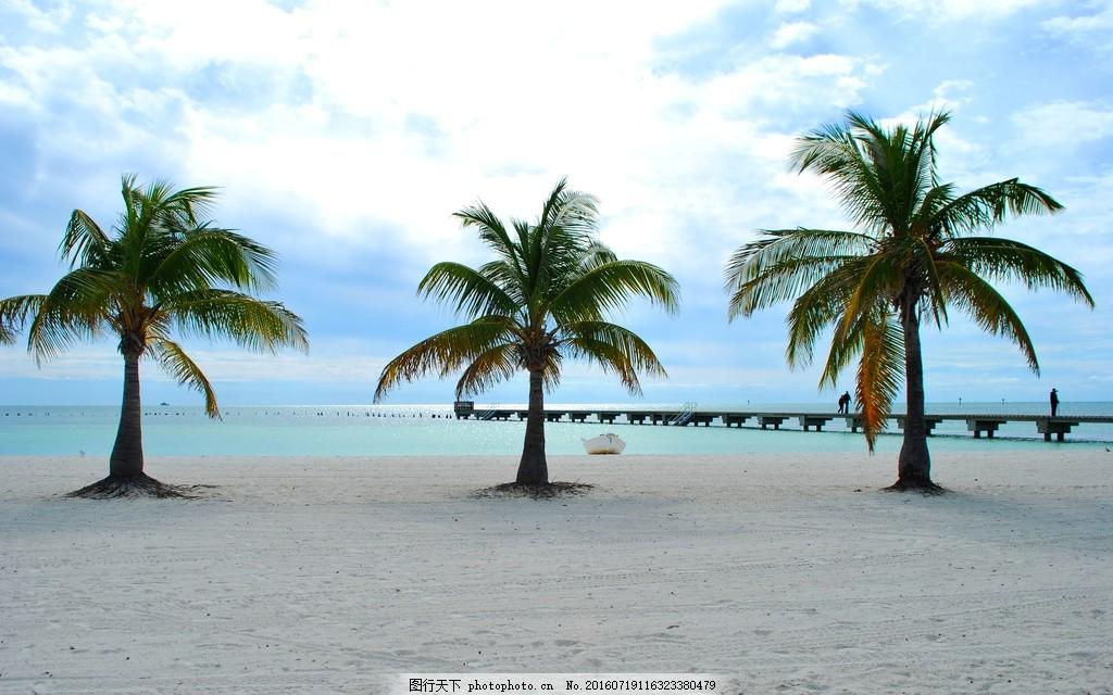 沙滩椰子树风景图片