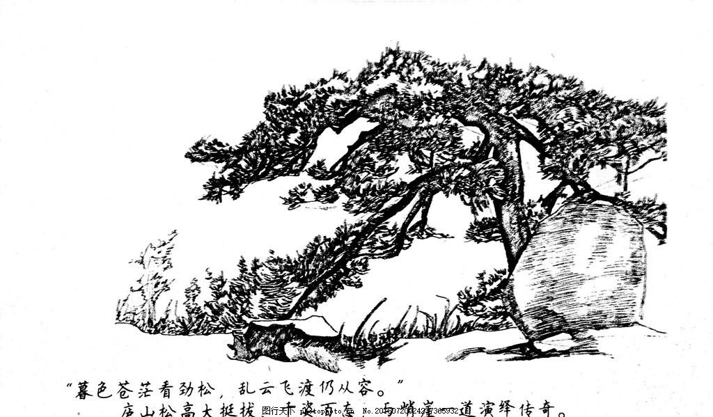 庐山手绘 江西 九江 庐山 钢笔速写 庐山松 设计 自然景观 建筑园林