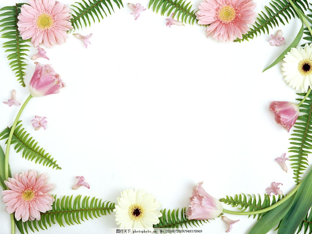 手绘花框ppt素材