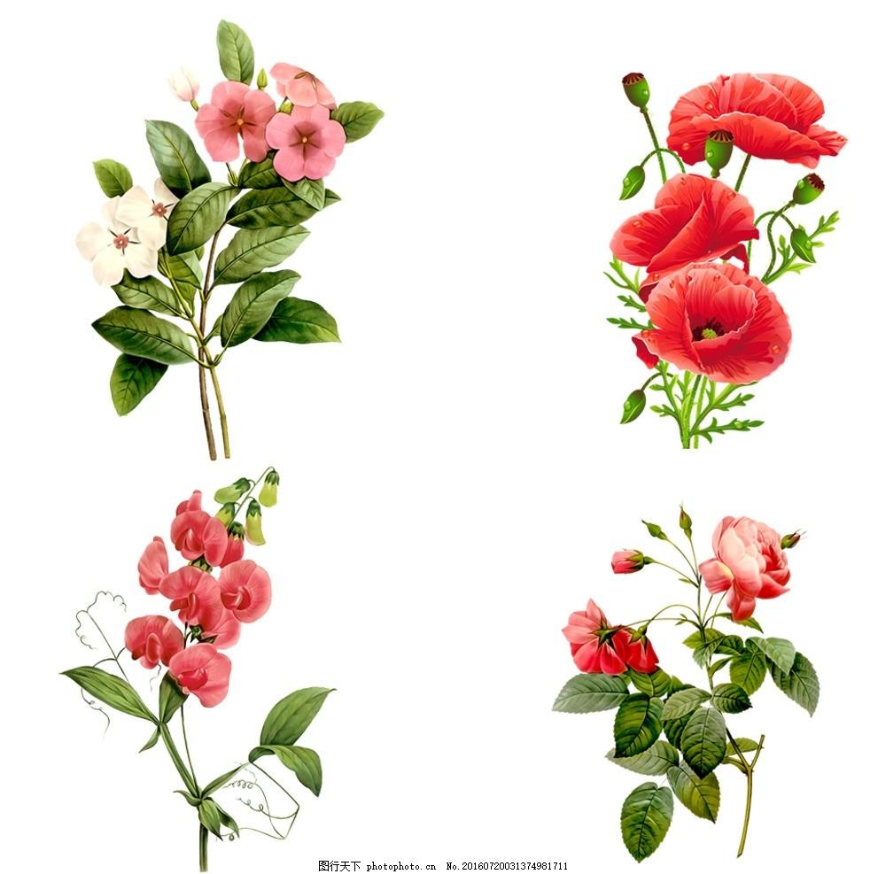 手绘花朵素材免扣