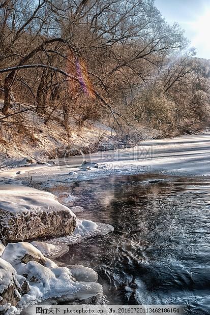 阳光下的树林 河 冬天河 太阳 强光 禁食水流水 冰雪 阳光 树枝 河岸