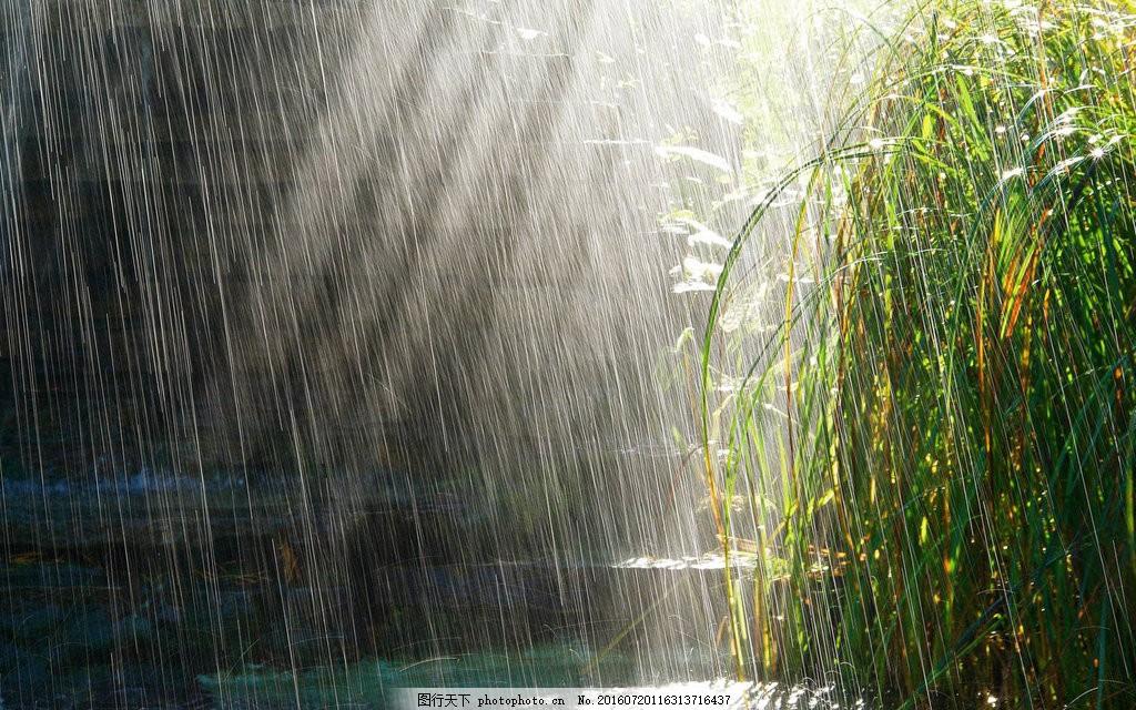 高清下雨天风景图片下载 雨天 下雨 雨水 大雨 唯美