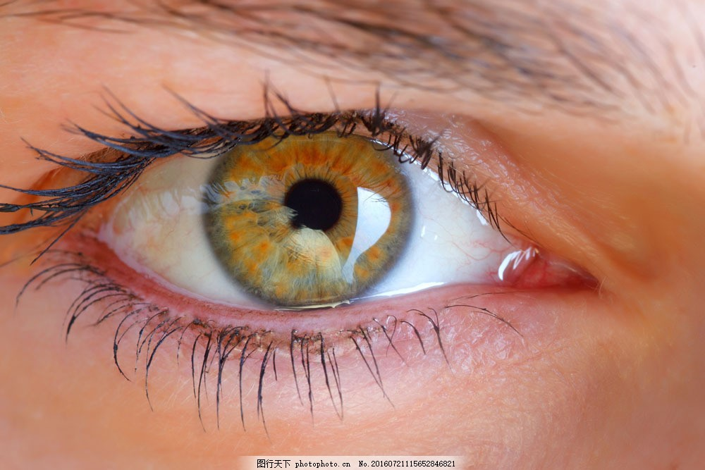黄色眼睛摄影图片素材 黄色眼睛 眼睛特写 瞳孔 眼珠 眼球 女性眼睛