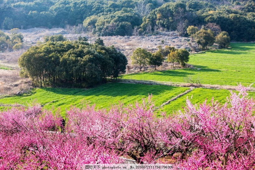 江苏张家港香山风景区